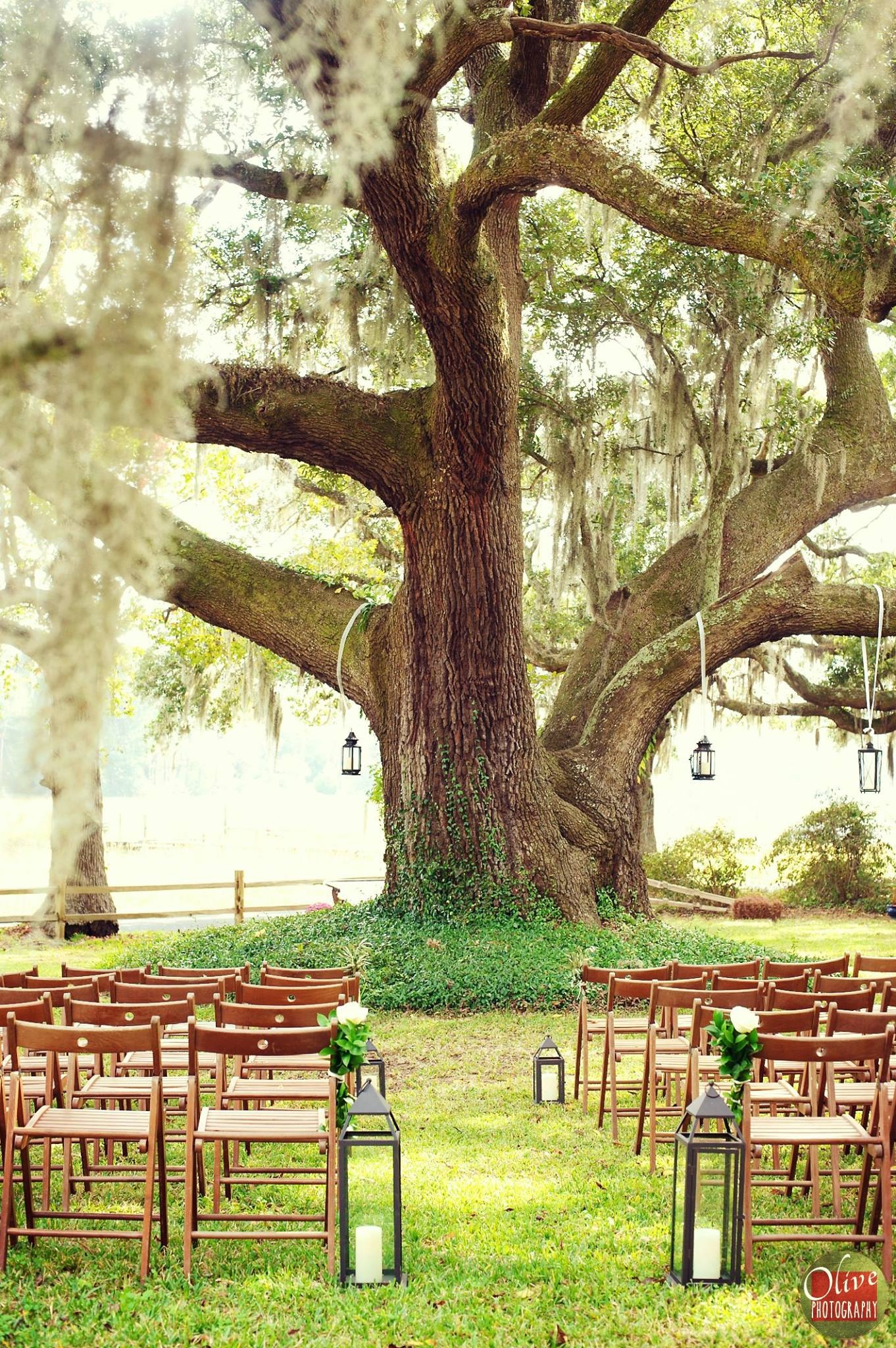 South Carolina | Rustic Bride | Barn Wedding Venues, Farm ...