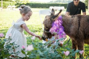 flower girl and donkey at rustic wedding venue in north carolina